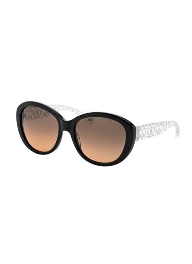 Coach - Güneş Gözlüğü
